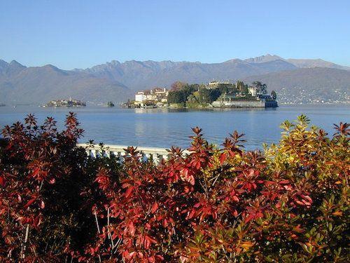 Rosso d'Autunno sul Lago Maggiore: il foliage