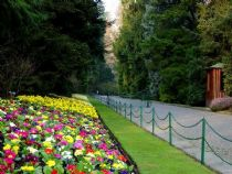 Villa Taranto, the avenue flowers