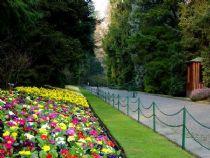 Villa Taranto, the avenue flowers